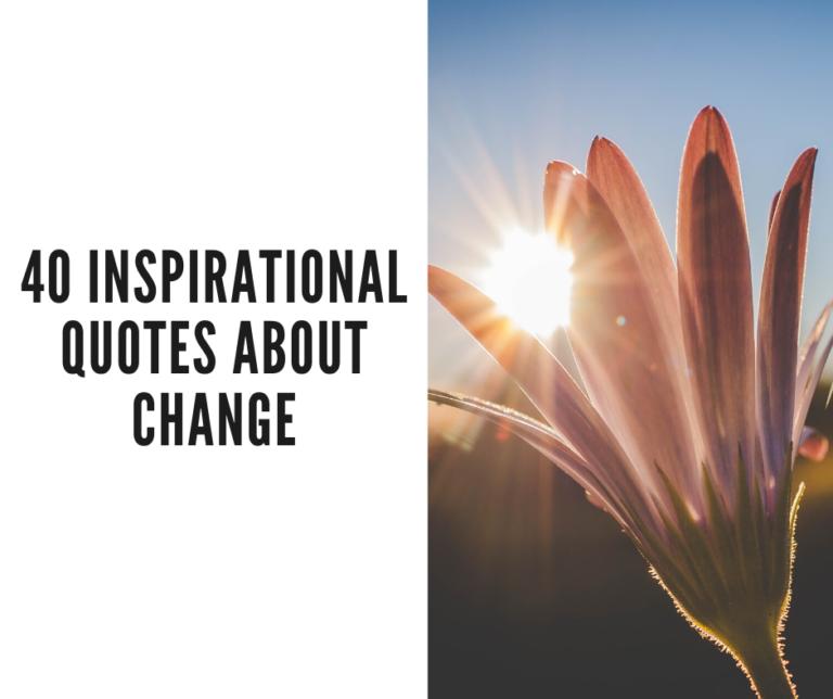 quotes change