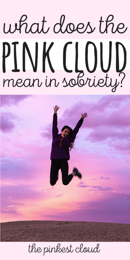 """How To Use """"The Pink Cloud"""" To Stop Drinking Alcohol"""